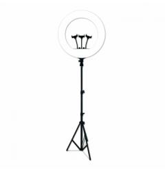 Кольцевая лампа (RL-21) 54 см со штативом